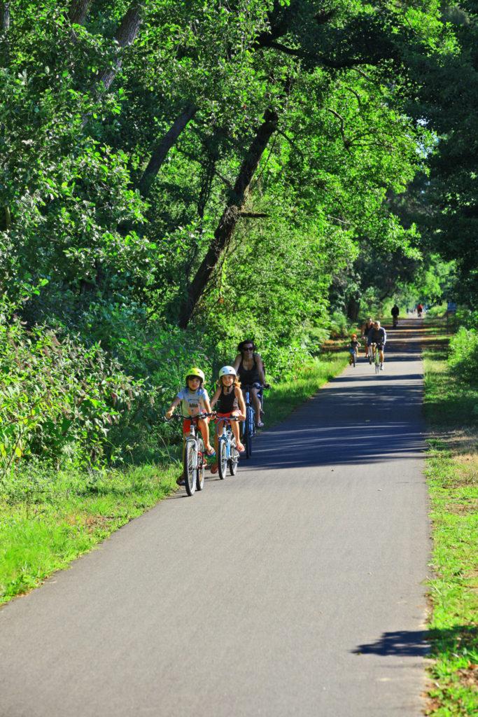Locations vélo Messanges