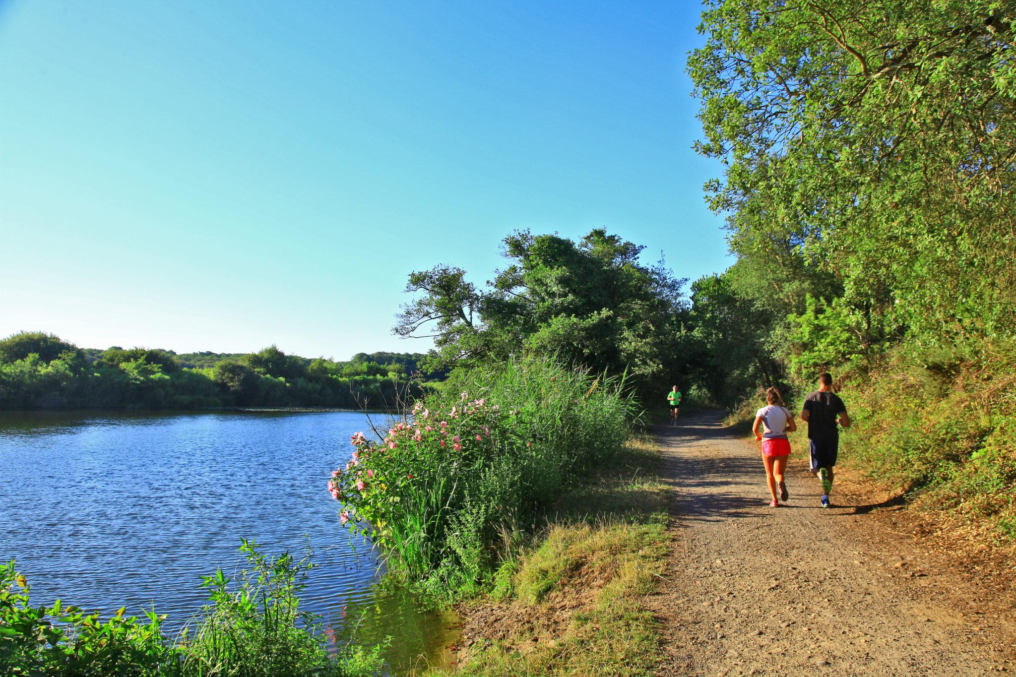 courir dans les Landes autour de l'étang de Moïsan, boucle de 4km