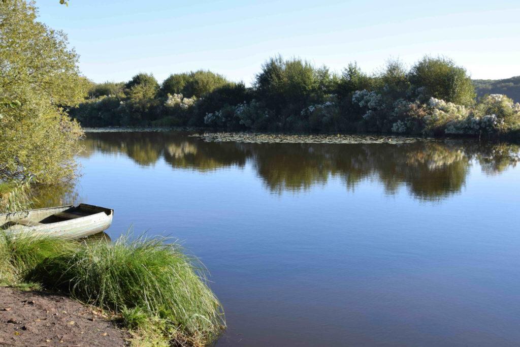 Sortie nature accompagnée autour de l'étang de Moïsan