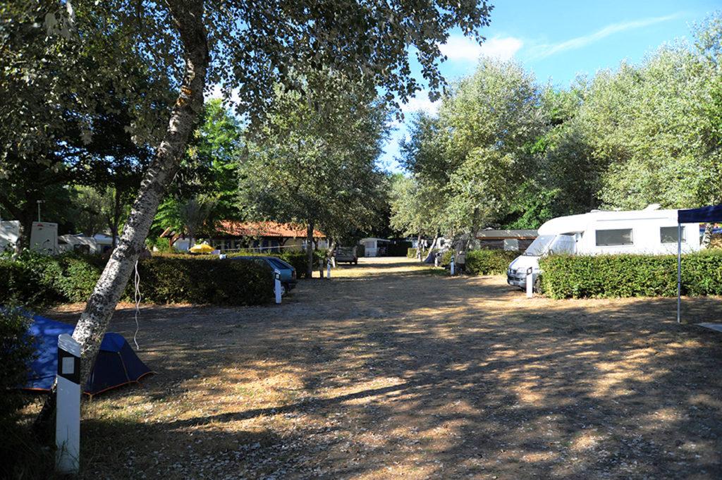 camping le moussaillon_messanges_landes atlantique sud (2)