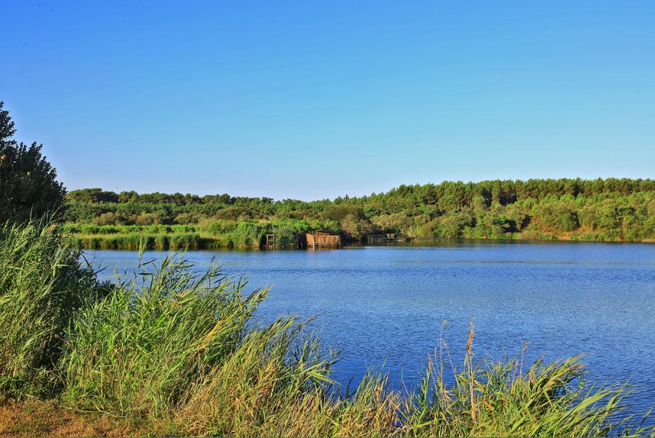 étang de Moisan JACPHOT