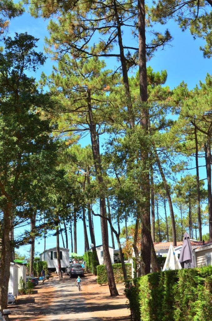 interieur-camp (3)